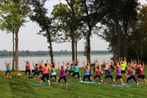 Yoga at Upper Shirley Vineyards